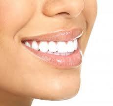 pivot dentaire définition